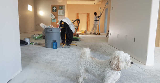 Tips to Survive a Home Renovation